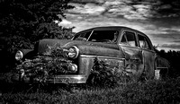 Old Rusty Dodge